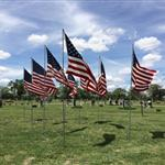 Memorial Day 2014 Fairview Cemetery Flags